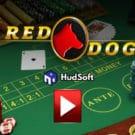 Bài Red Dog